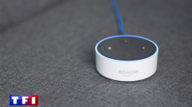 Journal TF1 Controle Vocal Amazon Echo Dot